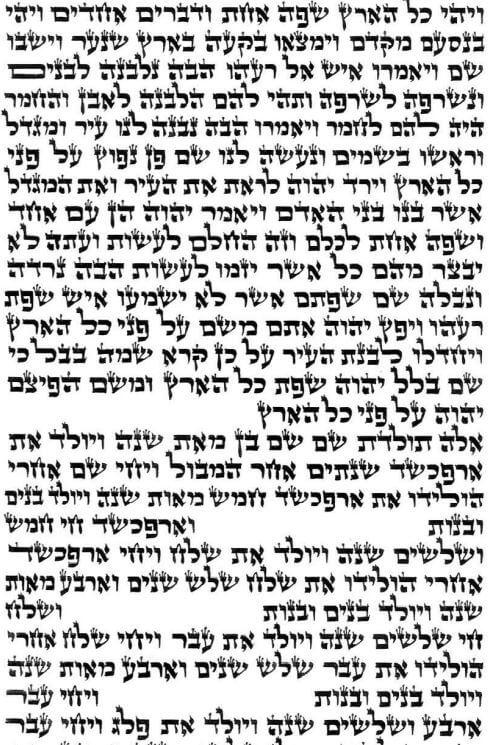 ספר תורה בית יוסף